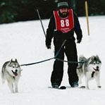 Rob skijoring with Elphie and Uinta